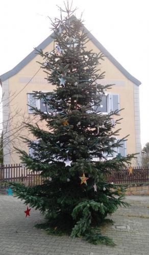 Weihnachtsbaum stellen